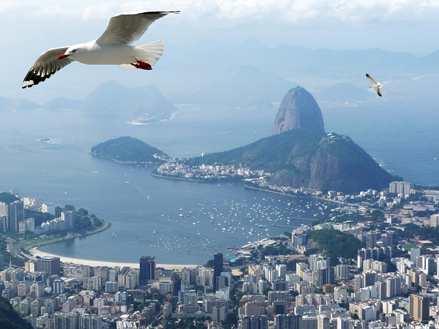rio de janeiro restaurants time out guide Everything You Need to Know about Rio de Janeiro Olympic Hotel Packages
