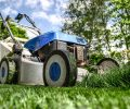 Make Your Own Yard Cleanup Services